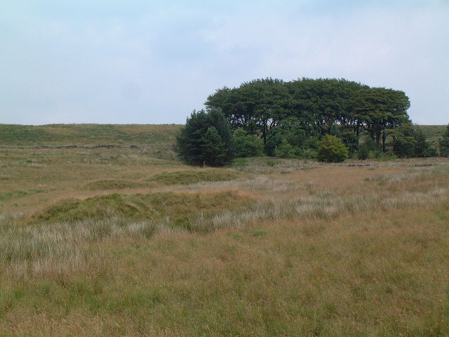 Bell Pits on Wheelton Moor