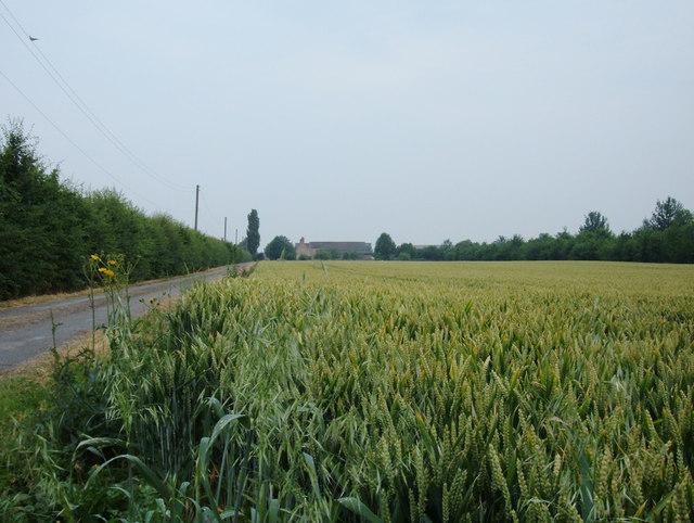 Towards Ash Row Farm