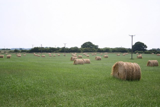 Hay bales near Grange Farm