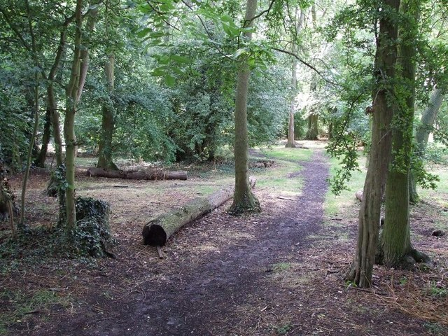 Bedgrove Park