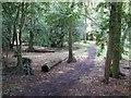 SP8412 : Bedgrove Park by Rob Farrow