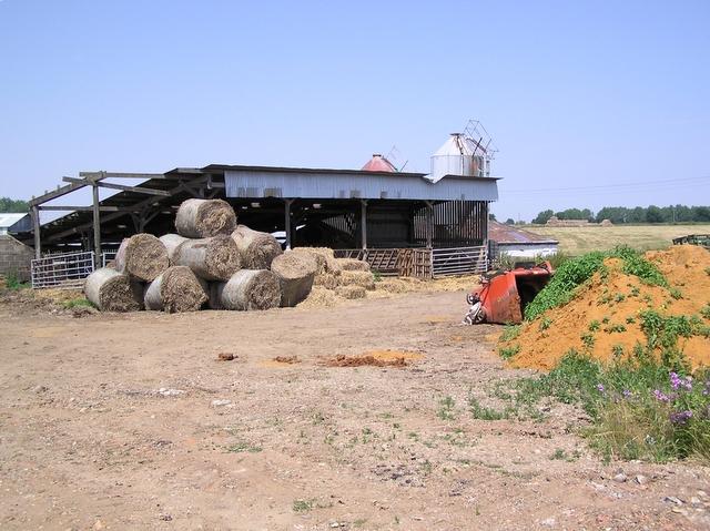 Whitehouse Farm, Ludham