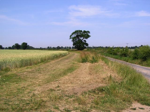 Concessionary path, near Catfield