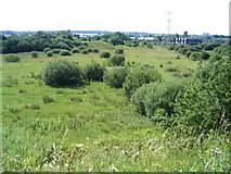 SJ2985 : Nature Reserve in Prenton, Wirral by Peter Craine