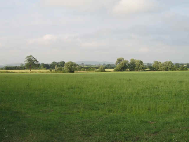 Fields near Bulkington