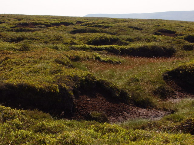 Peat Bog above Alport Dale