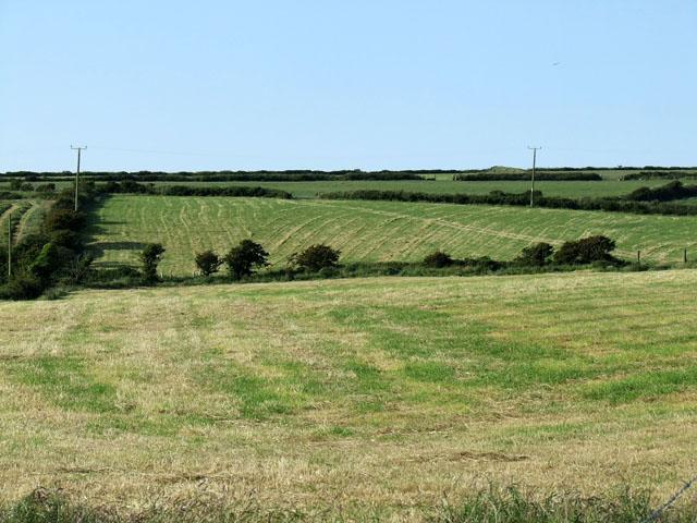 Field next to Bodwyn farm