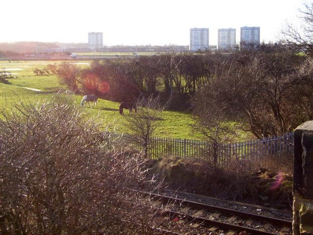 Field near Bidston Village