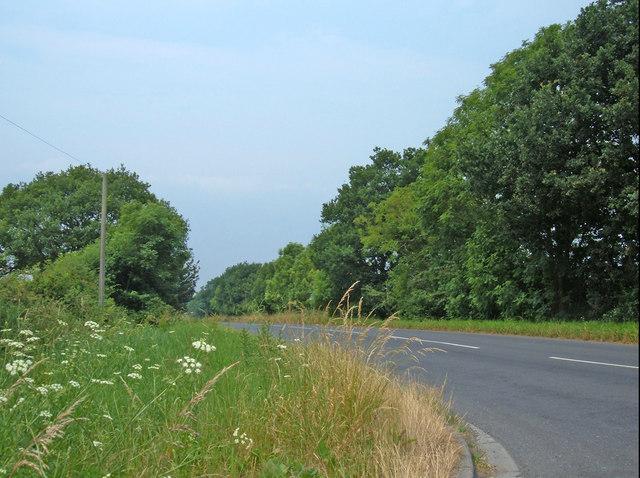 Long Lane, near Cawood