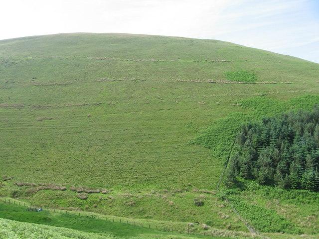 East Morton Hill