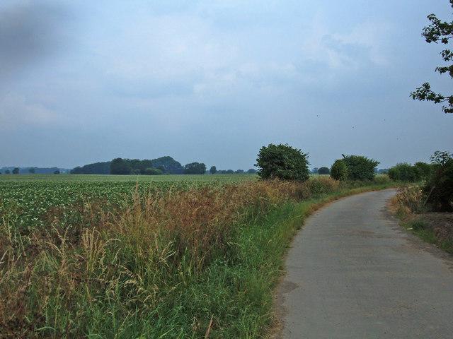 Northfield Lane, Church Fenton