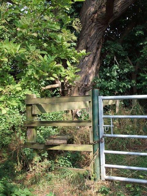Stile & Tree, Burcott