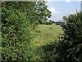 SP8417 : Field next to Rowsham Bridge by Rob Farrow
