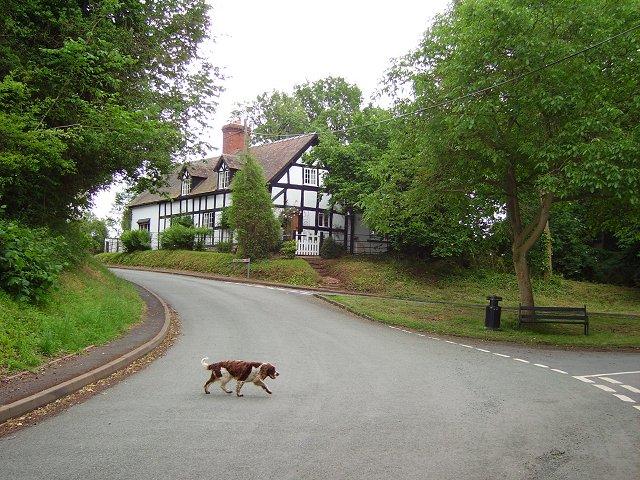 Village Green, Ashford Carbonell