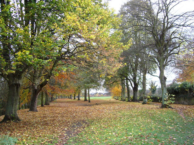 Tyne Green Country Park in Autumn