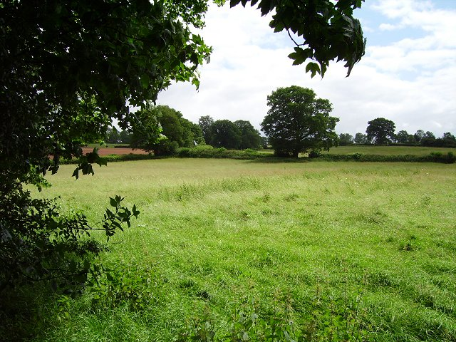 Meadows, Mill Farm