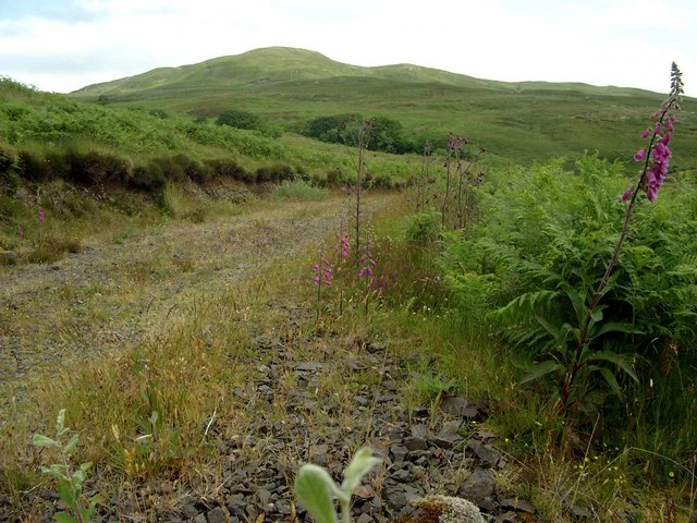 The Dalavil track