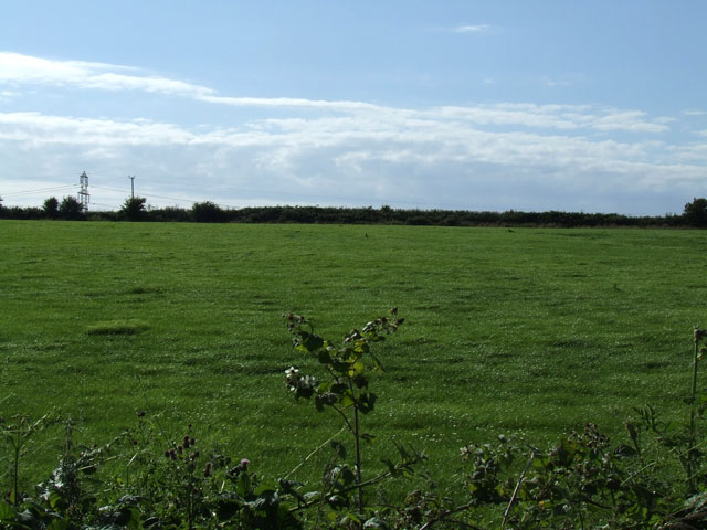 Field near to Llanynghenedl