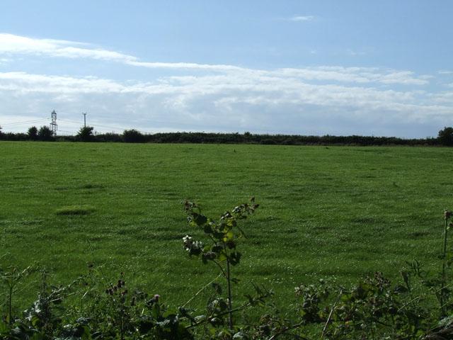 Field near to Llanynghenedl
