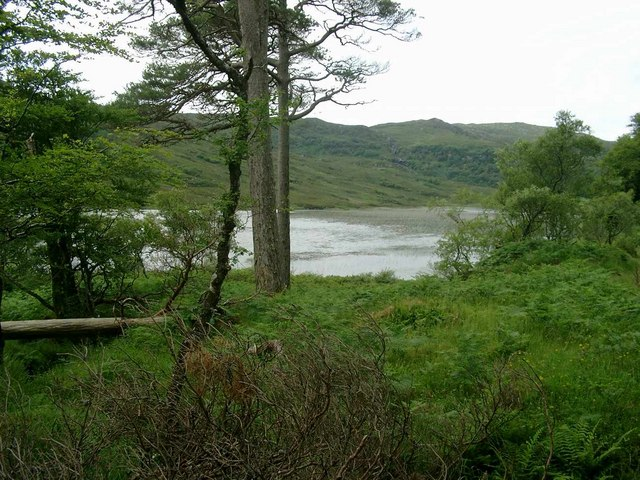 Loch a Ghlinne from Coille dalavil