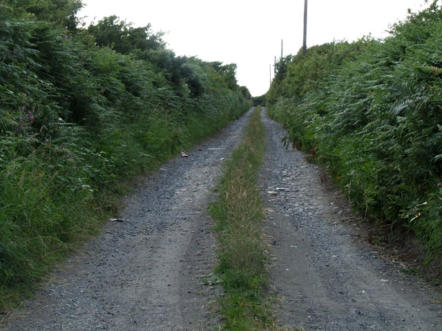 Track leading to Bodfardden ddu