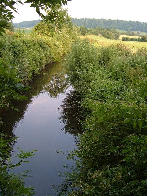 Chard Canal near Lillesdon