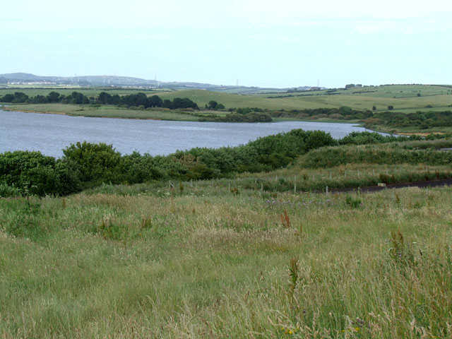 The Southern shore of Llyn Alaw