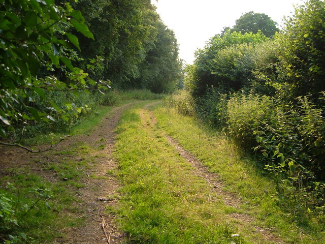 Footpath from Meare Green