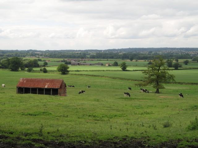 Farmland near to Devizes