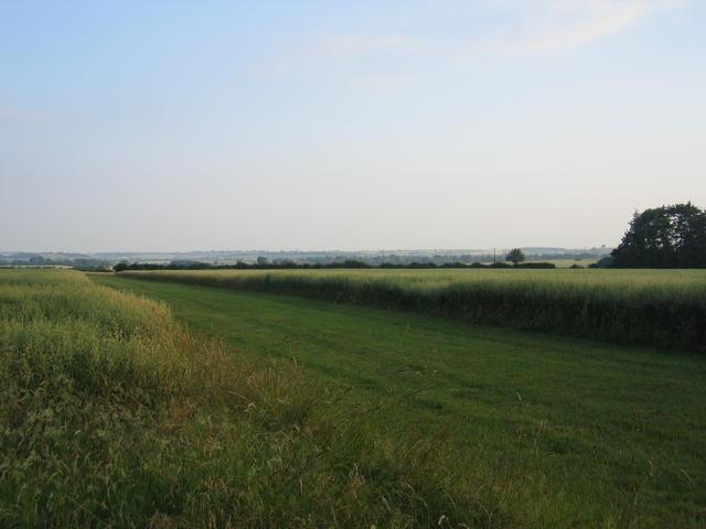 Ride near Heath Wood