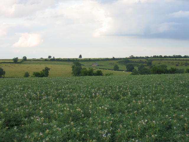 View from the footpath to Ratley