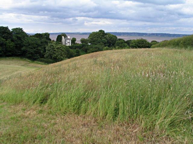Pastureland near Bagillt, Flintshire