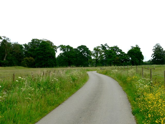 The Quiet Road to Sancton