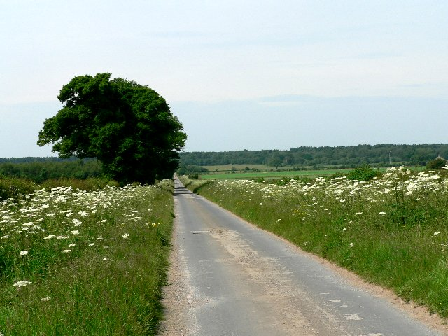 Cliffe Lane from Newbald to Houghton Moor
