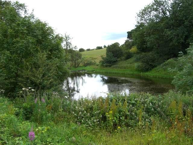 Pond below Latebrook House