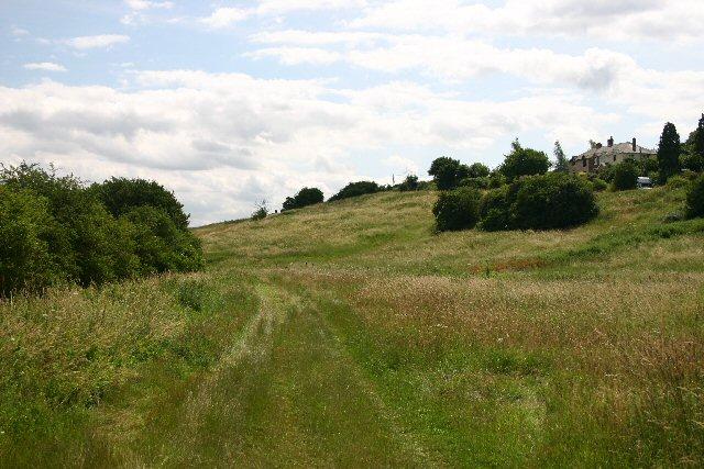 Footpath at Fern Hill