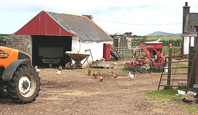 Finfan Farmyard