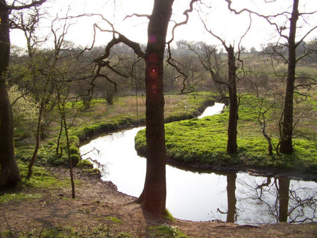 River at Dibbinsdale Nature Reserve