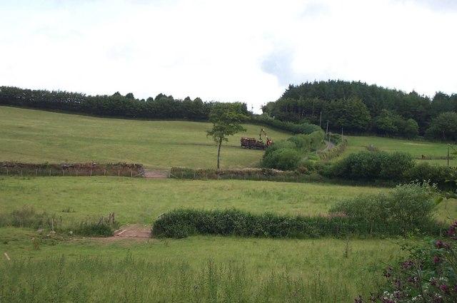Loading timber near Brendon Hill Farm