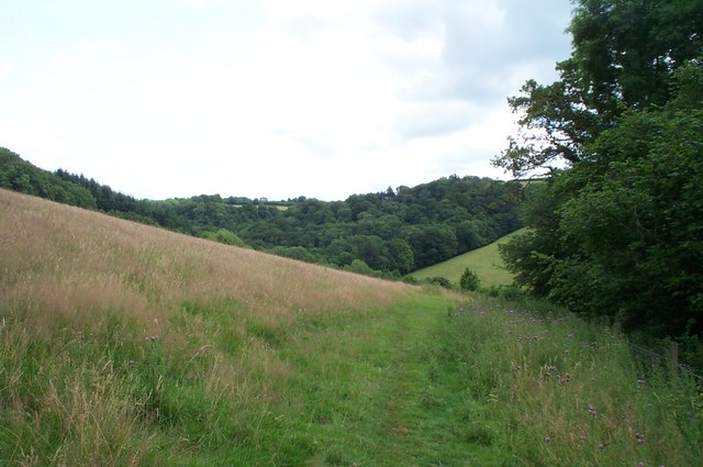 Public Bridleway from Cove Down Farm to Shute Farm