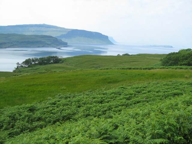 Rough land near Killiemor