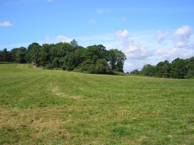 Route of Sussex Border Path, near Upper Stonehurst Farm, Surrey