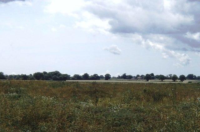 Empty farmland near Kingsnorth