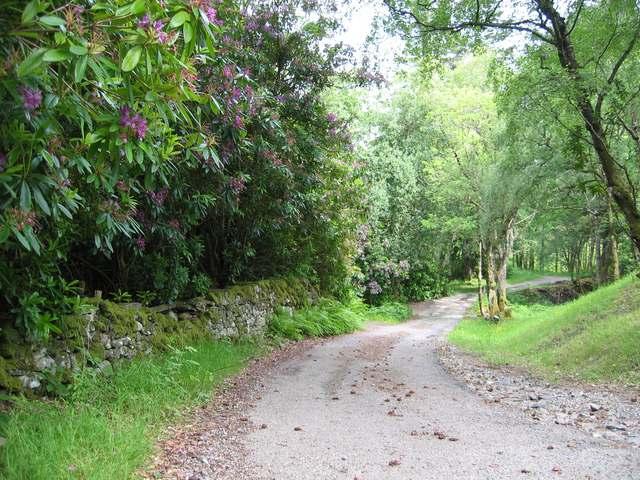 Road to Goirtean na Caorach
