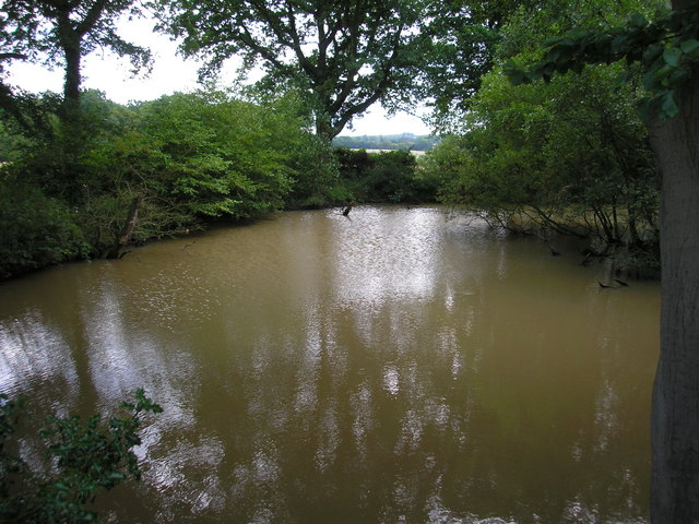 A small pond in Kent
