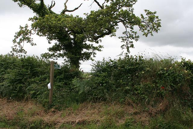 Sourton: start of footpath on Cowsen Down