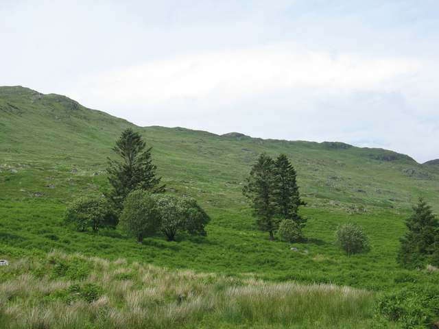 South east slopes of Beinn Chlaonleud