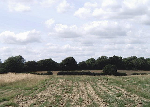 Open country near Braeside Farm south of Kingsnorth