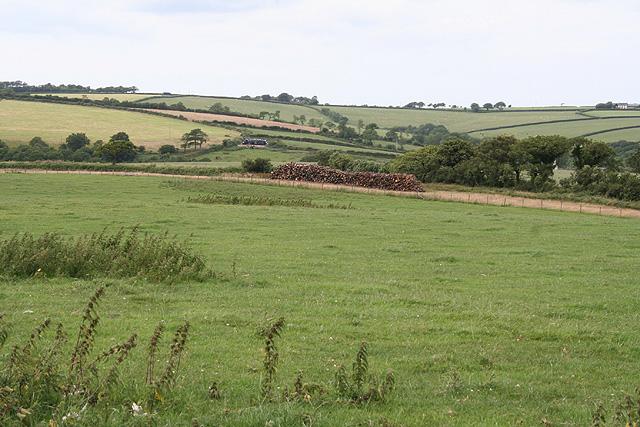 Beaworthy: east from Venn