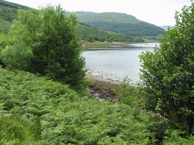 South shore of Loch Sunart
